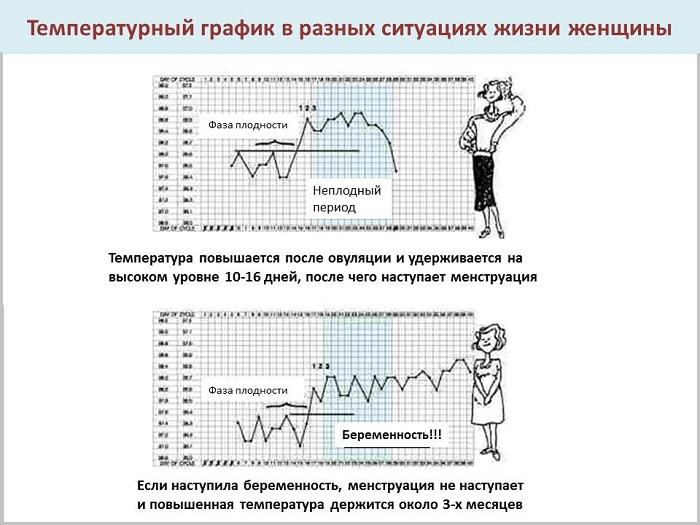 bazalnaya-temperatura-